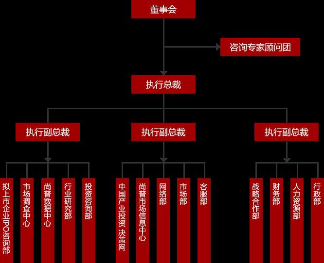 组织结构_尚普咨询